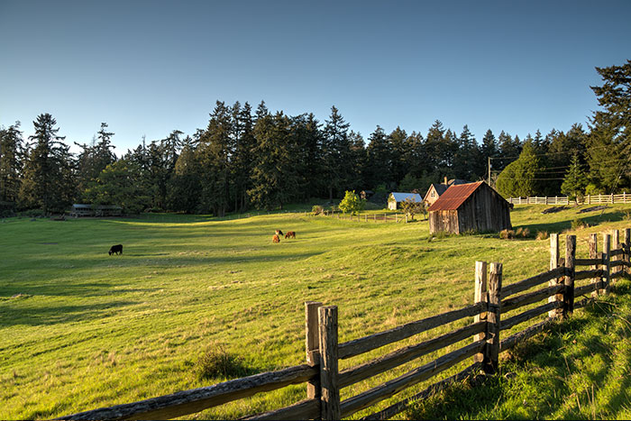 Farm Property on Salt Spring Island Geoff Hartle